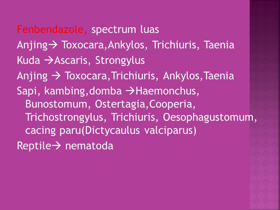  IMIDAZOTHIAZOLE, bekerja dgn menstimuli sistem syaraf cholinergic Nematoda yg menyebabkan paralisa (tapi tdk membunuh telur cacing)  Efektif thd Ascaris, Strongylus, cacing tambang/hookworm dan whipworm  Mis.