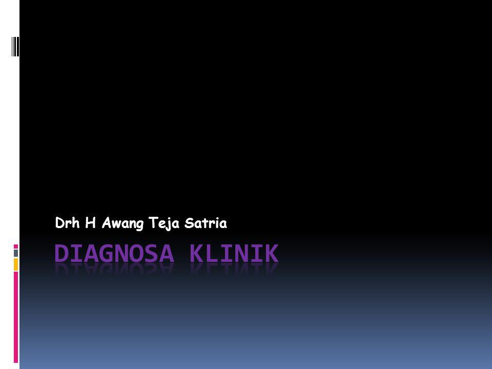 Drh H Awang Teja Satria