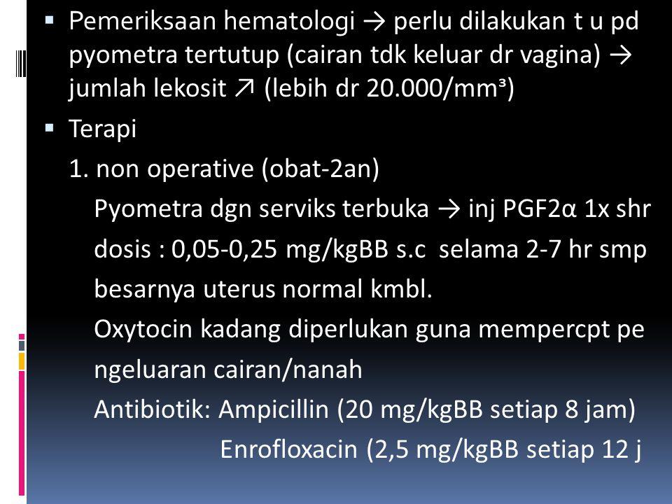 PYOMETRA  Penykt pd anj betina → timbunan cairan nanah di dlm uterus  Causa : infeksi bakteri ke dlm uterus mell vagina → hiperplasia lapisan endome