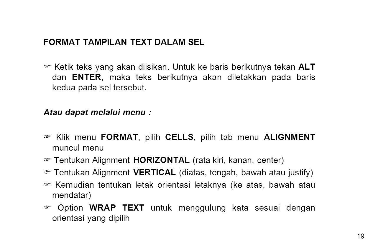 19 FORMAT TAMPILAN TEXT DALAM SEL  Ketik teks yang akan diisikan. Untuk ke baris berikutnya tekan ALT dan ENTER, maka teks berikutnya akan diletakkan