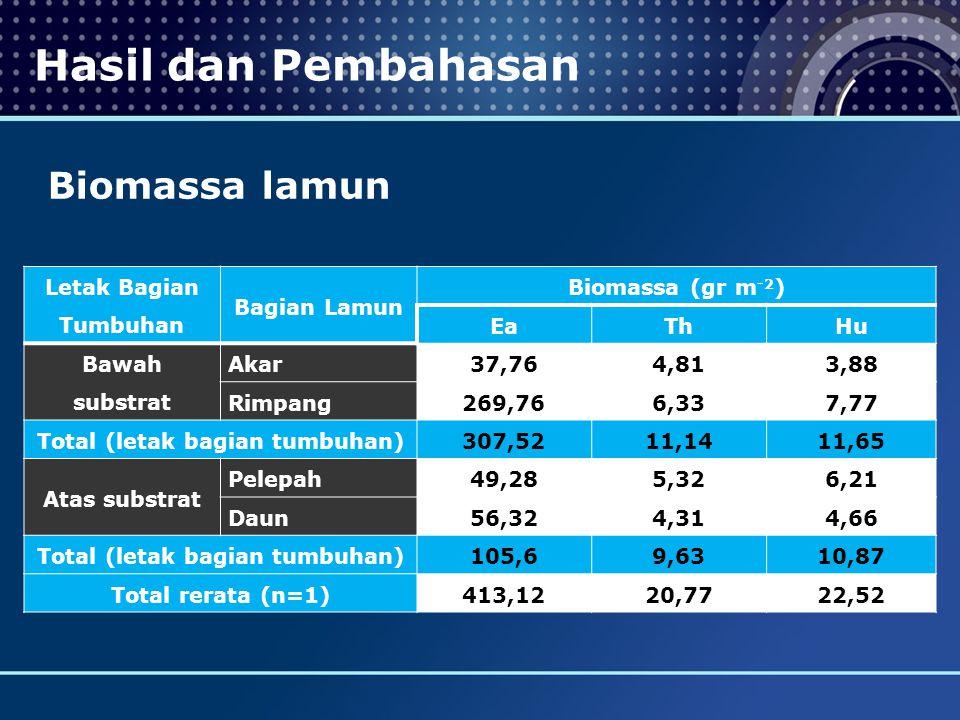 Hasil dan Pembahasan Biomassa lamun Letak Bagian Tumbuhan Bagian Lamun Biomassa (gr m -2 ) EaThHu Bawah substrat Akar37,764,813,88 Rimpang269,766,337,