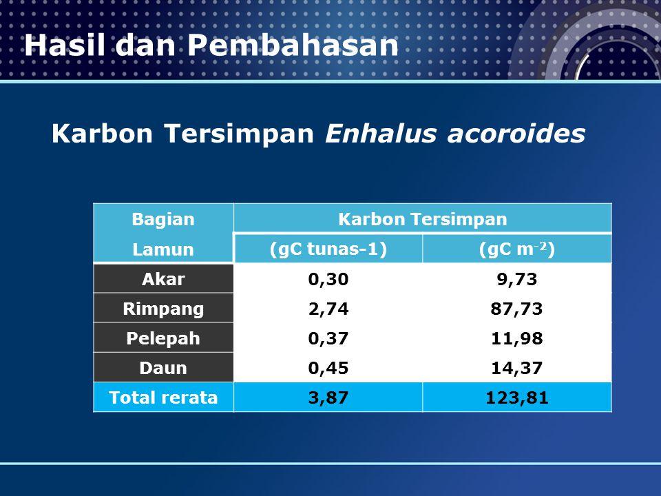 Karbon Tersimpan Enhalus acoroides Bagian Lamun Karbon Tersimpan (gC tunas-1) (gC m -2 ) Akar 0,30 9,73 Rimpang 2,74 87,73 Pelepah 0,37 11,98 Daun 0,45 14,37 Total rerata 3,87123,81