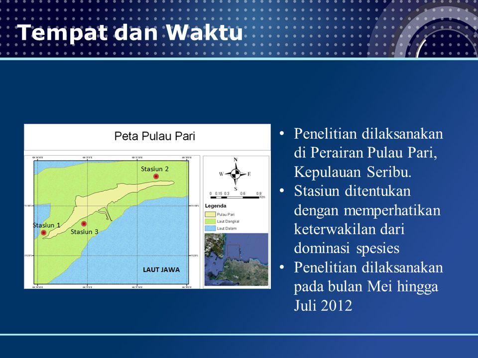 Tempat dan Waktu Penelitian dilaksanakan di Perairan Pulau Pari, Kepulauan Seribu. Stasiun ditentukan dengan memperhatikan keterwakilan dari dominasi