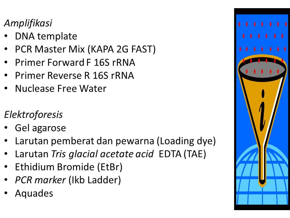 Amplifikasi DNA template PCR Master Mix (KAPA 2G FAST) Primer Forward F 16S rRNA Primer Reverse R 16S rRNA Nuclease Free Water Elektroforesis Gel agar