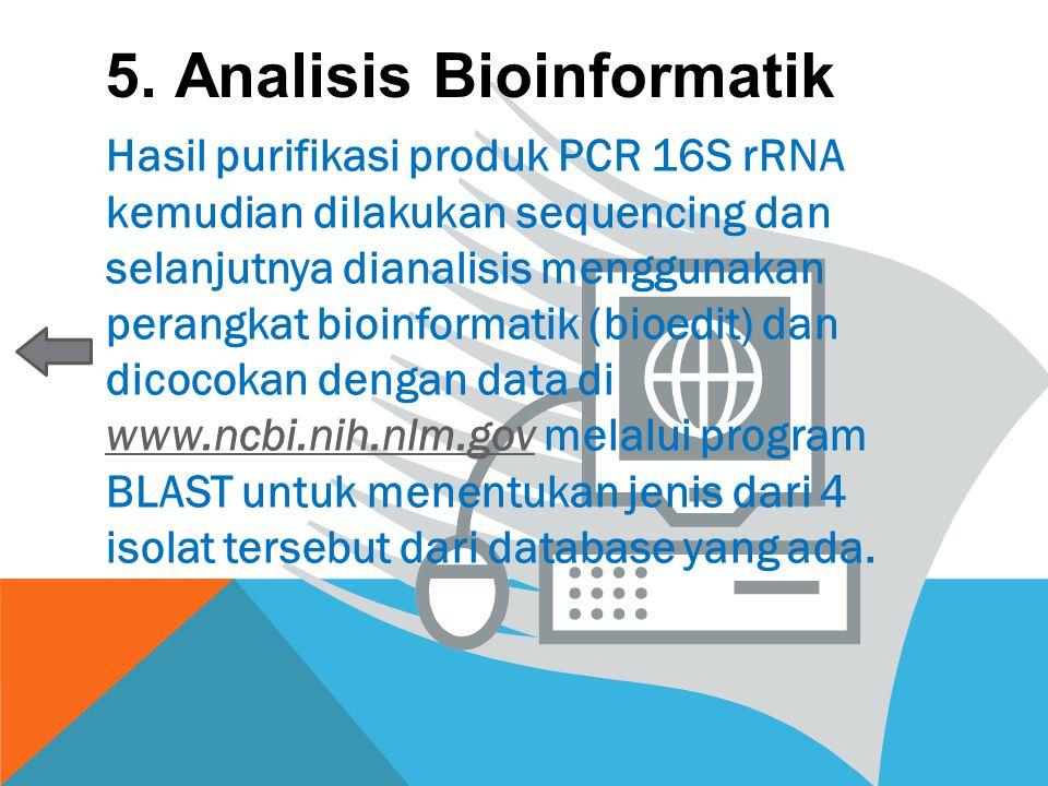 5. Analisis Bioinformatik Hasil purifikasi produk PCR 16S rRNA kemudian dilakukan sequencing dan selanjutnya dianalisis menggunakan perangkat bioinfor