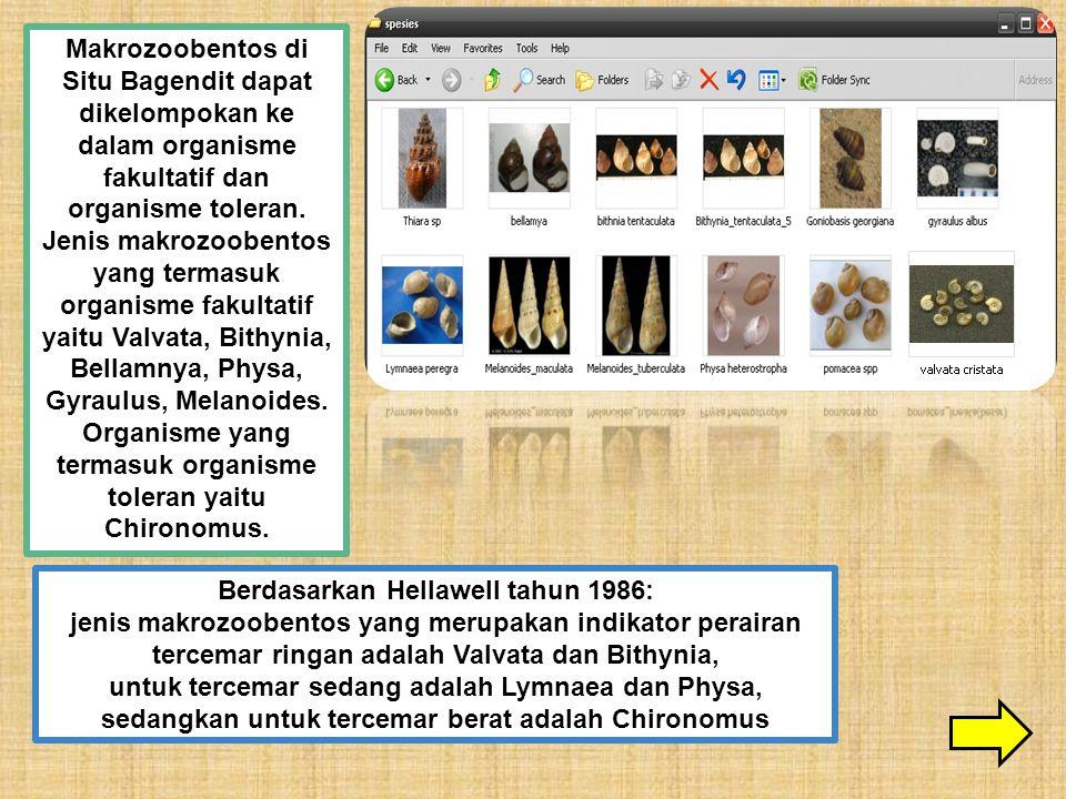 Makrozoobentos di Situ Bagendit dapat dikelompokan ke dalam organisme fakultatif dan organisme toleran. Jenis makrozoobentos yang termasuk organisme f