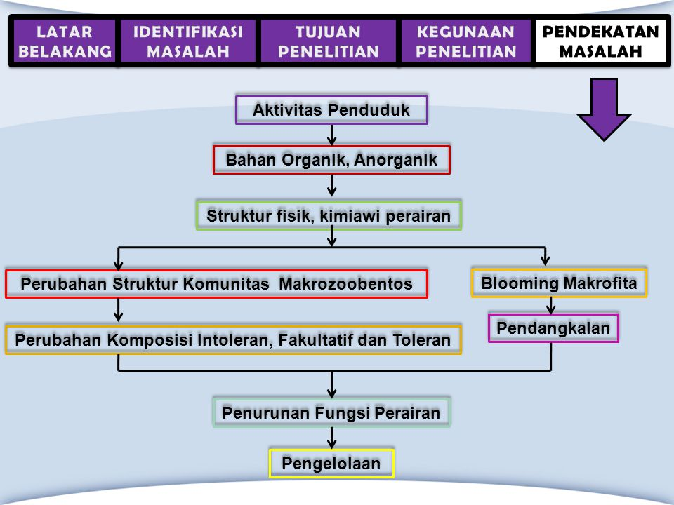 Bahan Organik, Anorganik Bahan Organik, Anorganik Perubahan Struktur Komunitas Makrozoobentos Perubahan Struktur Komunitas Makrozoobentos Struktur fis