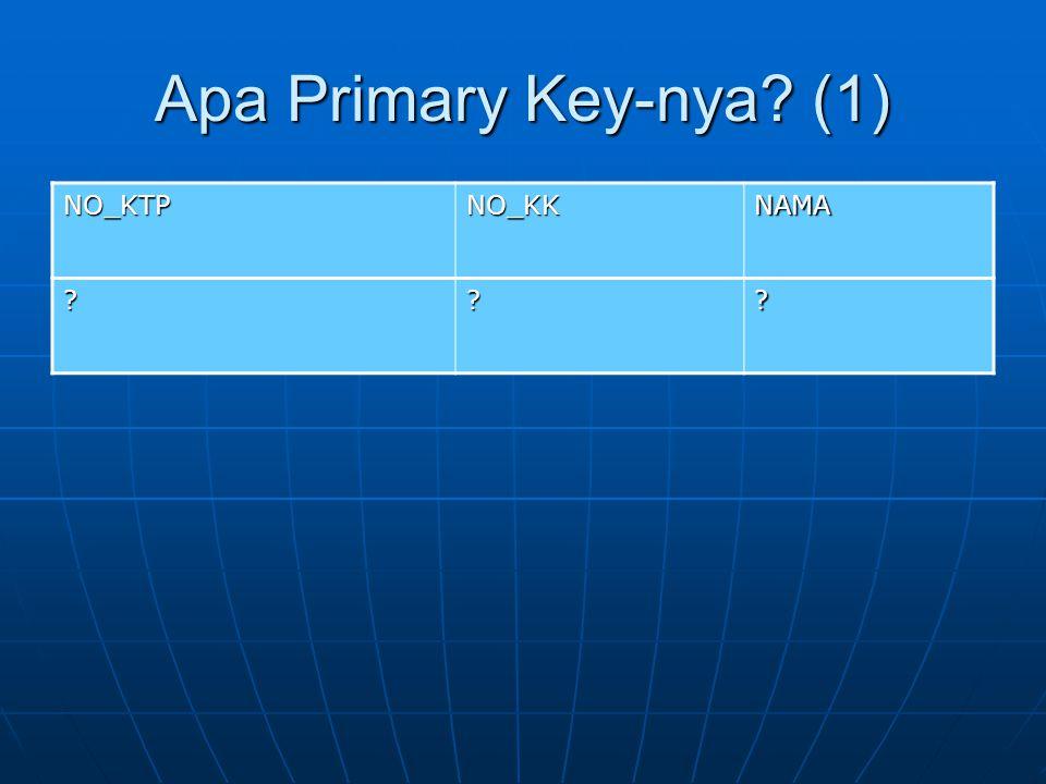 Apa Primary Key-nya? (1) NO_KTPNO_KKNAMA ???