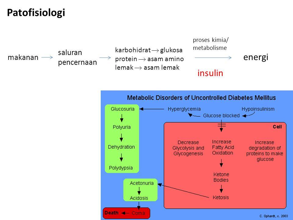 Patofisiologi saluran pencernaan karbohidrat  glukosa protein  asam amino lemak  asam lemak makanan energi proses kimia/ metabolisme insulin