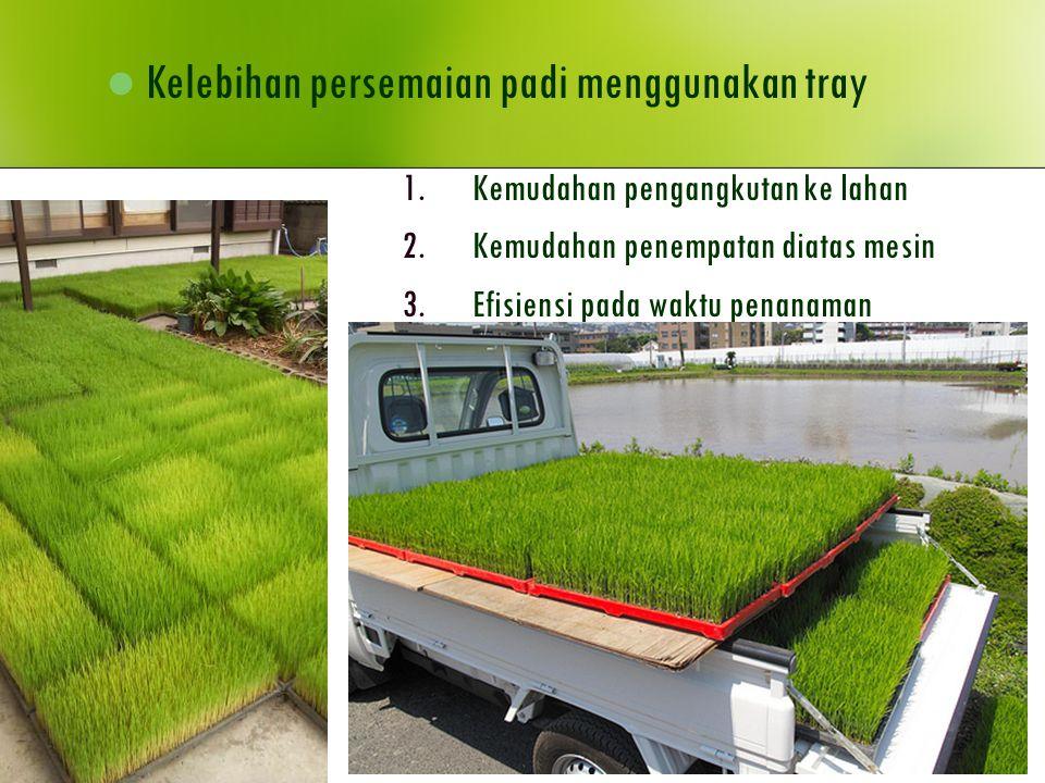1.Kemudahan pengangkutan ke lahan 2.Kemudahan penempatan diatas mesin 3.Efisiensi pada waktu penanaman Kelebihan persemaian padi menggunakan tray