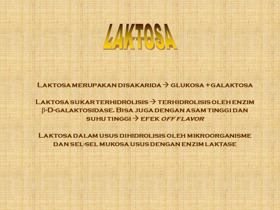 Laktosa merupakan disakarida  glukosa +galaktosa Laktosa sukar terhidrolisis  terhidrolisis oleh enzim  -D-galaktosidase. Bisa juga dengan asam tin