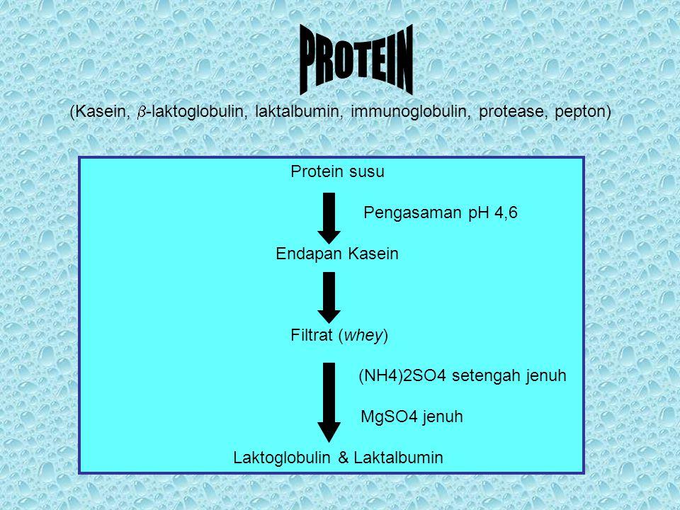 Protein susu Pengasaman pH 4,6 Endapan Kasein Filtrat (whey) (NH4)2SO4 setengah jenuh MgSO4 jenuh Laktoglobulin & Laktalbumin (Kasein,  -laktoglobuli