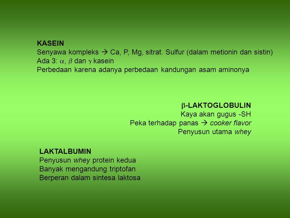 KASEIN Senyawa kompleks  Ca, P, Mg, sitrat. Sulfur (dalam metionin dan sistin) Ada 3: ,  dan  kasein Perbedaan karena adanya perbedaan kandungan a