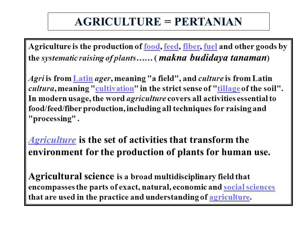 AGRICULTURE = PERTANIAN Agriculture is the production of food, feed, fiber, fuel and other goods by the systematic raising of plants…… ( makna budiday