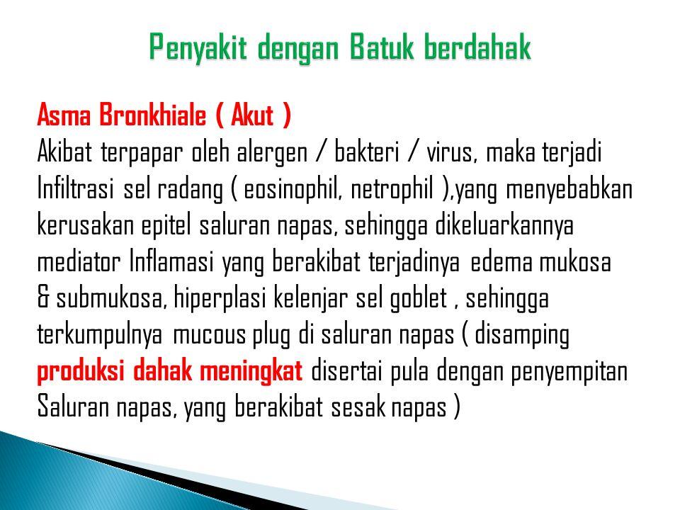 Asma Bronkhiale ( Akut ) Akibat terpapar oleh alergen / bakteri / virus, maka terjadi Infiltrasi sel radang ( eosinophil, netrophil ),yang menyebabkan
