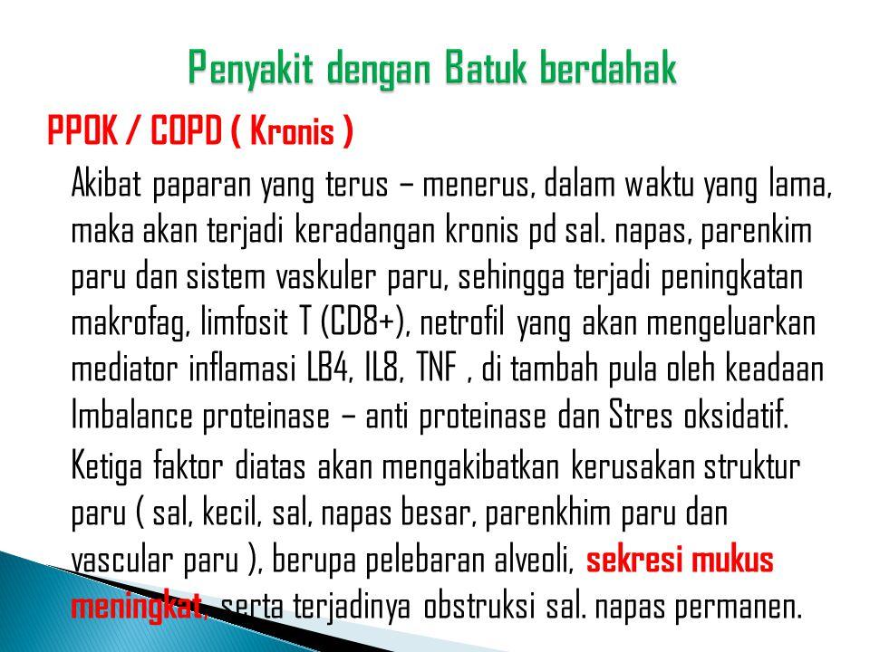 PPOK / COPD ( Kronis ) Akibat paparan yang terus – menerus, dalam waktu yang lama, maka akan terjadi keradangan kronis pd sal. napas, parenkim paru da