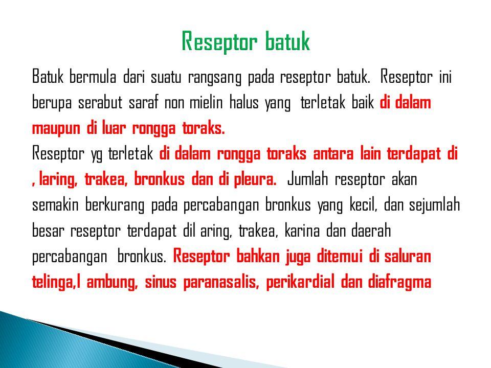 Batuk bermula dari suatu rangsang pada reseptor batuk. Reseptor ini berupa serabut saraf non mielin halus yang terletak baik di dalam maupun di luar r
