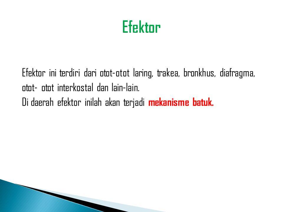 Efektor ini terdiri dari otot-otot laring, trakea, bronkhus, diafragma, otot- otot interkostal dan lain-lain. Di daerah efektor inilah akan terjadi me