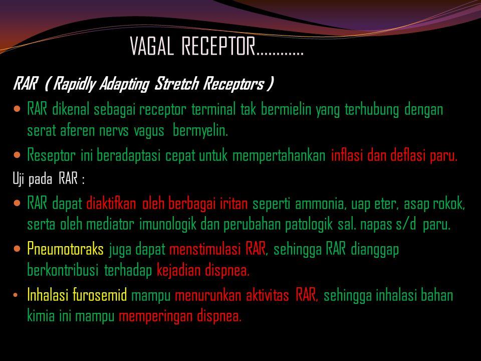VAGAL RECEPTOR………… RAR ( Rapidly Adapting Stretch Receptors ) RAR dikenal sebagai receptor terminal tak bermielin yang terhubung dengan serat aferen nervs vagus bermyelin.