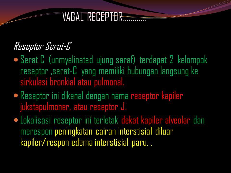 VAGAL RECEPTOR………… Reseptor Serat-C Serat C (unmyelinated ujung saraf) terdapat 2 kelompok reseptor,serat-C yang memiliki hubungan langsung ke sirkulasi bronkial atau pulmonal.