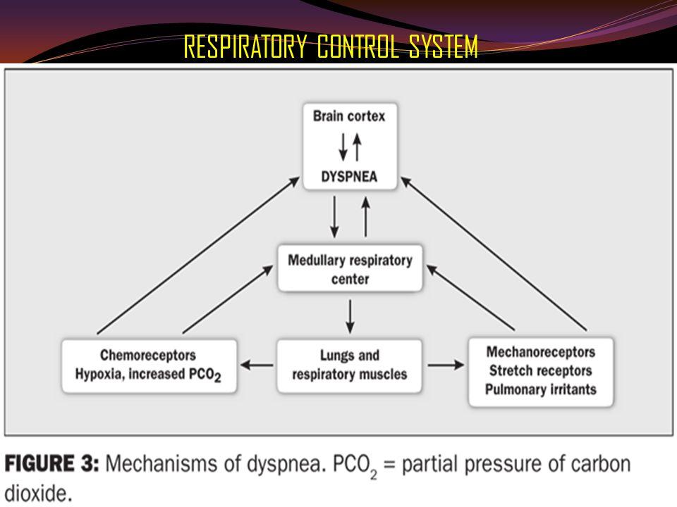 Pembagian sesak napas ( berdasar onset ) Sesak napas akut ( onset < 1 bulan )  Pulmonary Embolism  Pulmonary edema ( cardiogenik / non cardiogenik )  Sumbatan jalan napas ( benda asing, Epiglottitis)  Pneumothorax (Spontaneous)  Pneumonia  Asthma