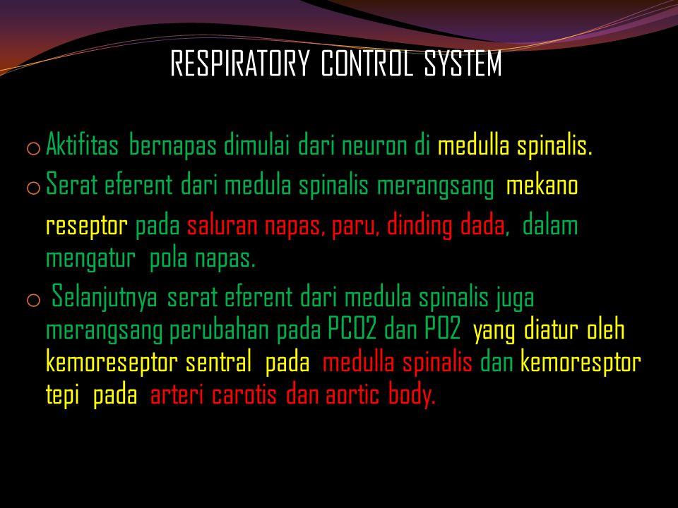 Pembagian sesak napas ( berdasar organ yang terlibat ) PARU DAN SALURAN NAPAS  Pneumothorax  Pneumonia,TB paru, Tumor paru  Pulmonary Embolism  Obstructive Lung Disease Emphysema / PPOK, Asthma Bronchiectasis ARDS ( Adult Respiratory Distress syndroma )
