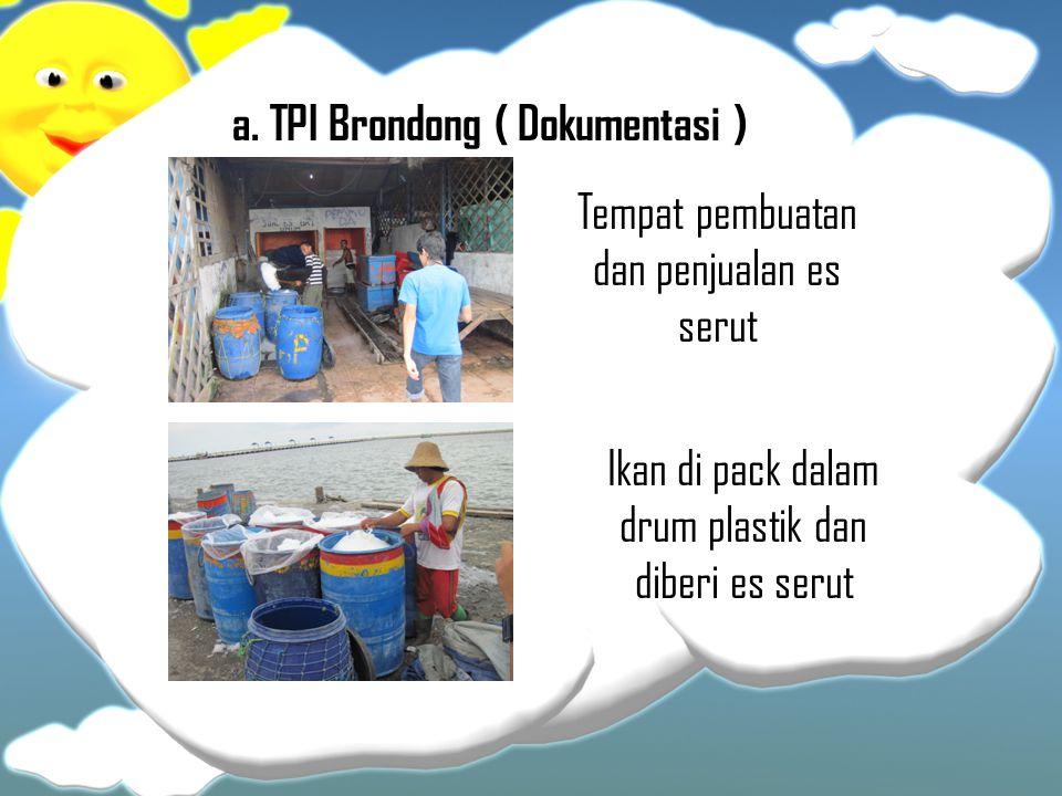 a. TPI Brondong ( Dokumentasi ) Ikan di pack dalam drum plastik dan diberi es serut Tempat pembuatan dan penjualan es serut