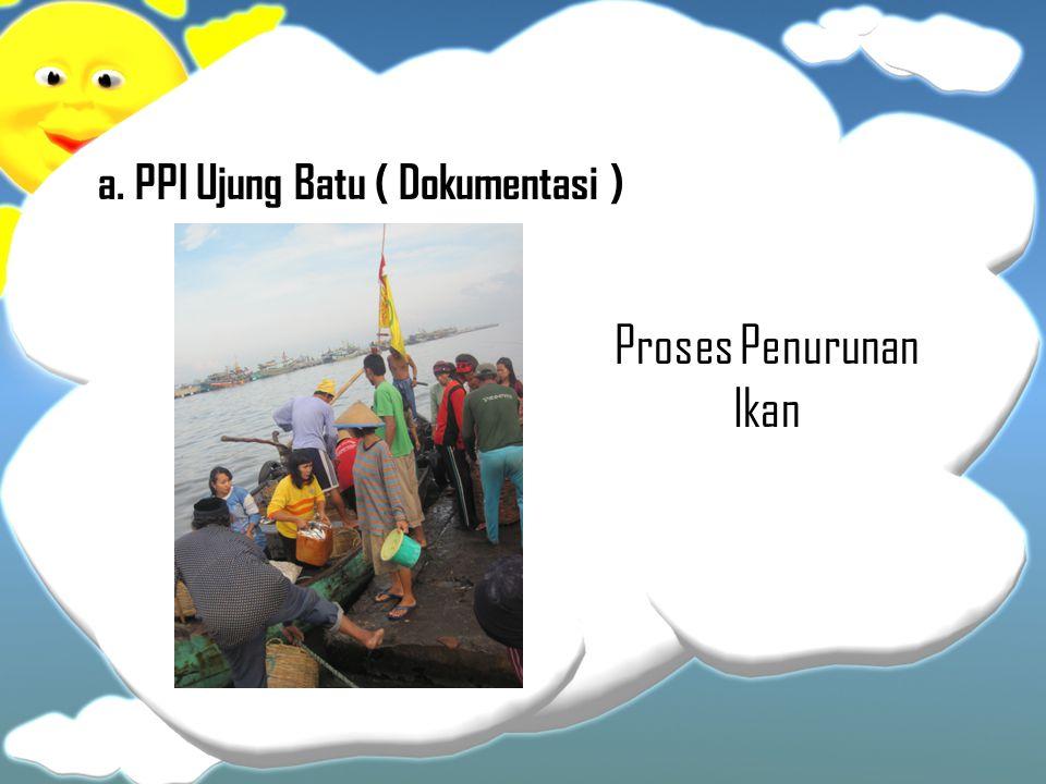 a. PPI Ujung Batu ( Dokumentasi ) Proses Penurunan Ikan