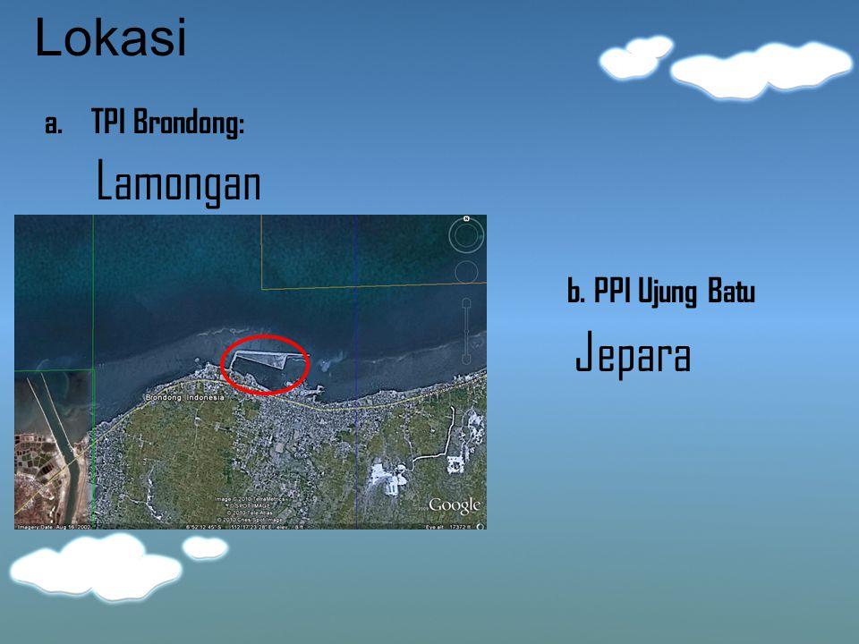 Lokasi a. TPI Brondong: b. PPI Ujung Batu Lamongan Jepara