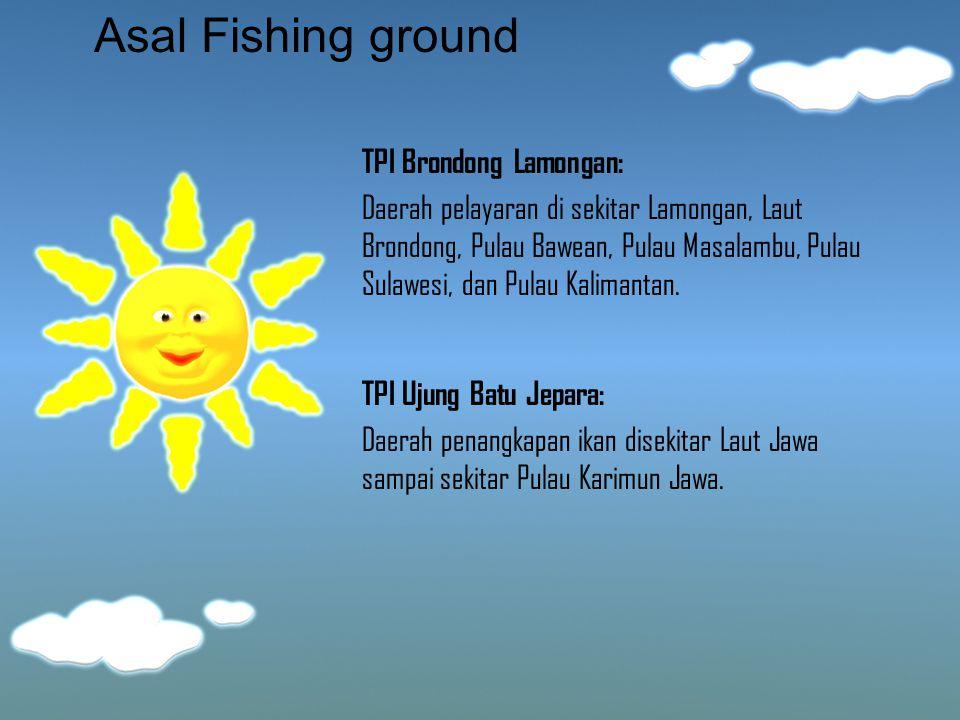 Asal Fishing ground TPI Brondong Lamongan: Daerah pelayaran di sekitar Lamongan, Laut Brondong, Pulau Bawean, Pulau Masalambu, Pulau Sulawesi, dan Pul