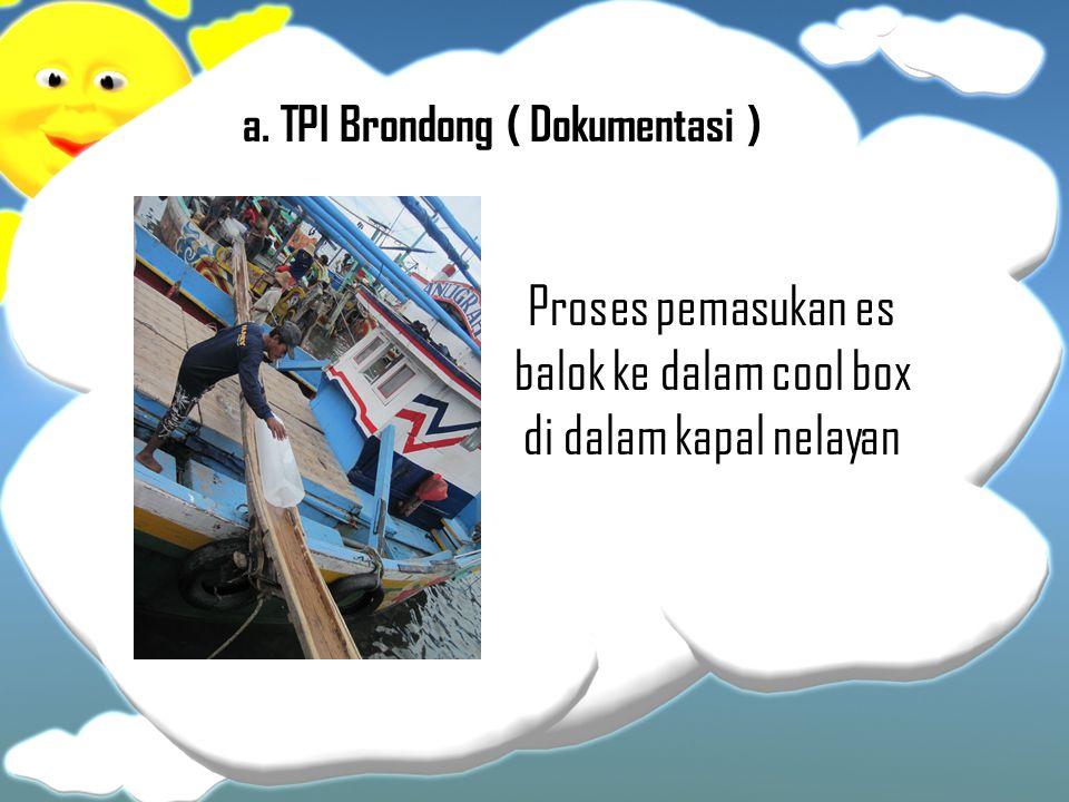 a. TPI Brondong ( Dokumentasi ) Proses pemasukan es balok ke dalam cool box di dalam kapal nelayan