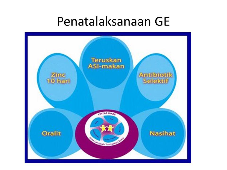 Penatalaksanaan GE