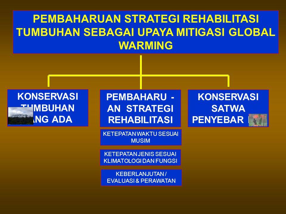 PEMBAHARUAN STRATEGI REHABILITASI TUMBUHAN SEBAGAI UPAYA MITIGASI GLOBAL WARMING KONSERVASI TUMBUHAN YANG ADA PEMBAHARU - AN STRATEGI REHABILITASI KONSERVASI SATWA PENYEBAR BIJI KETEPATAN WAKTU SESUAI MUSIM KETEPATAN JENIS SESUAI KLIMATOLOGI DAN FUNGSI KEBERLANJUTAN / EVALUASI & PERAWATAN