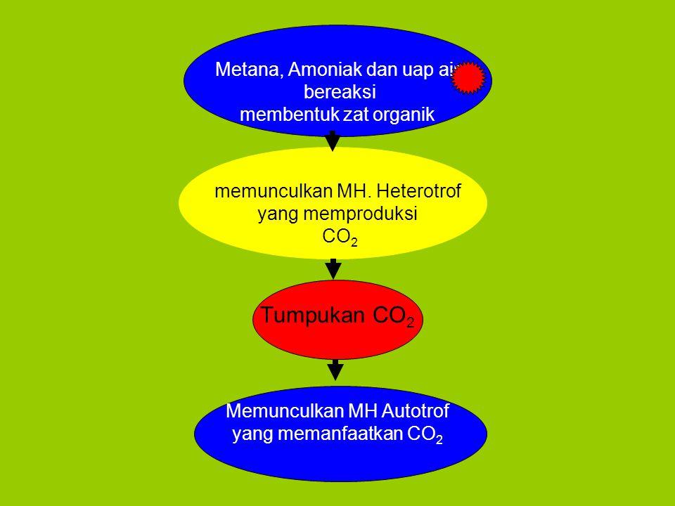 Metana, Amoniak dan uap air bereaksi membentuk zat organik memunculkan MH.