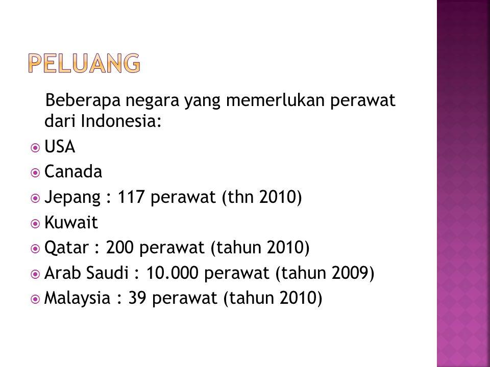 Beberapa negara yang memerlukan perawat dari Indonesia:  USA  Canada  Jepang : 117 perawat (thn 2010)  Kuwait  Qatar : 200 perawat (tahun 2010)  Arab Saudi : 10.000 perawat (tahun 2009)  Malaysia : 39 perawat (tahun 2010)