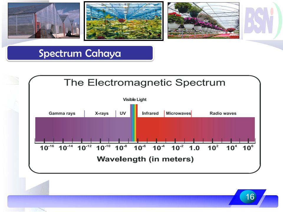 16 Spectrum Cahaya