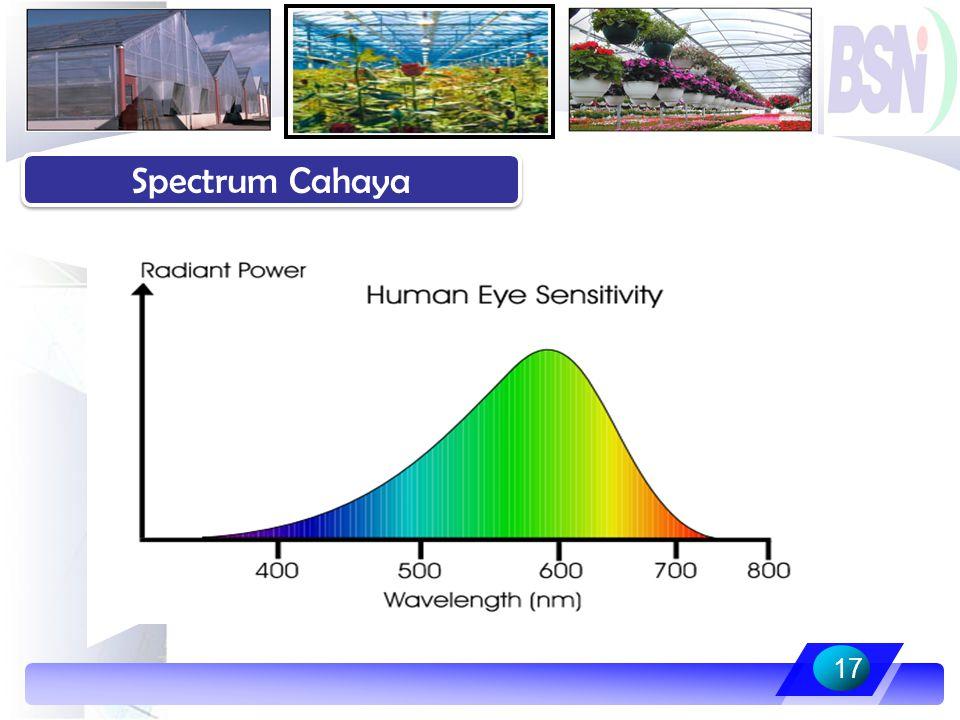 17 Spectrum Cahaya