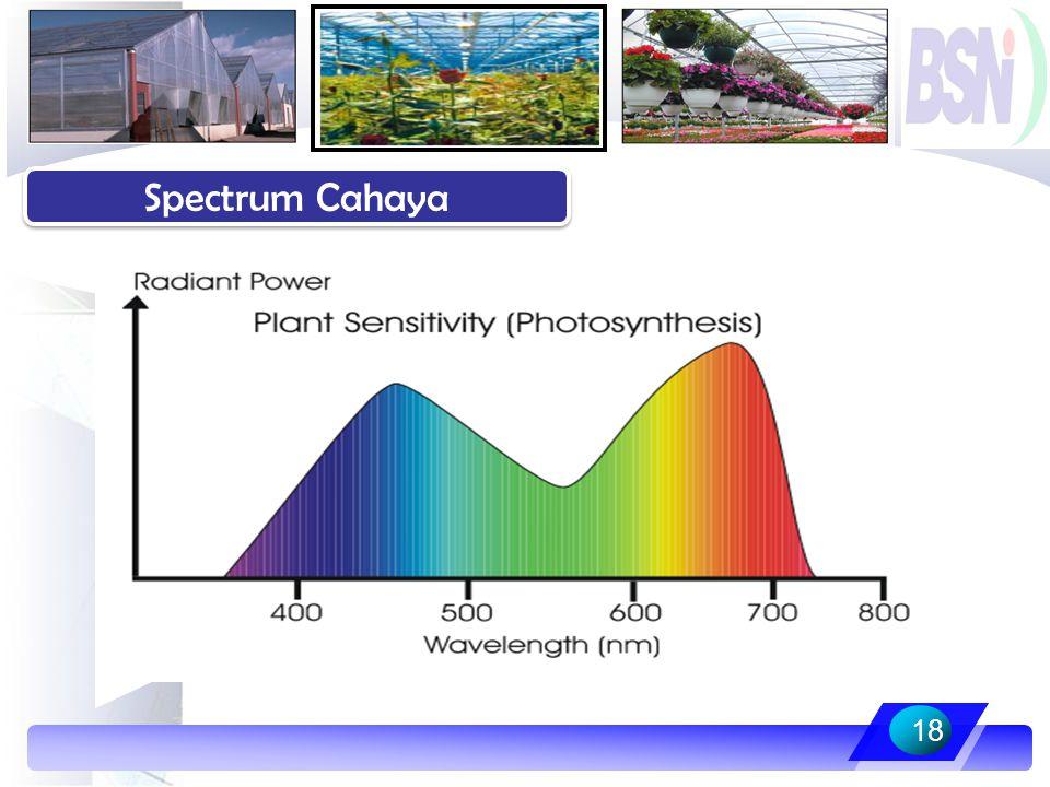 18 Spectrum Cahaya