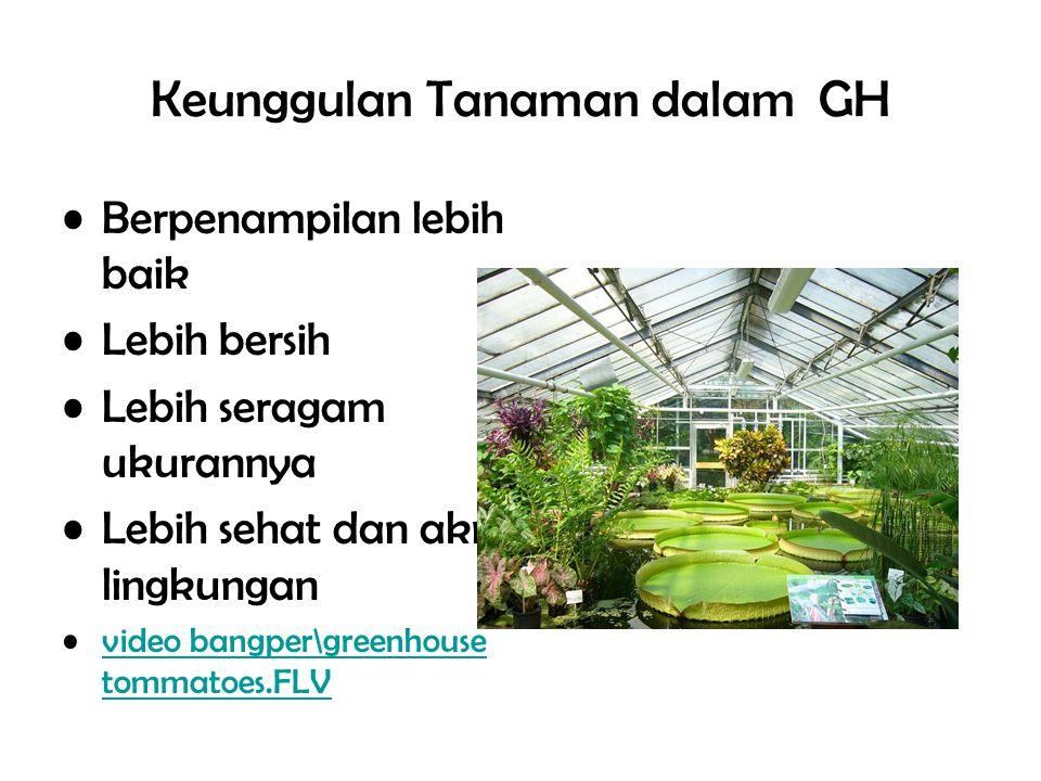 Keunggulan Tanaman dalam GH Berpenampilan lebih baik Lebih bersih Lebih seragam ukurannya Lebih sehat dan akrab lingkungan video bangper\greenhouse to