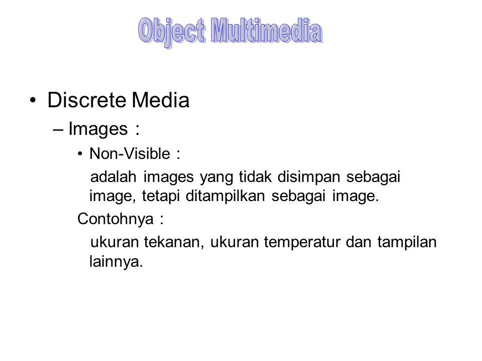 Discrete Media –Images : Non-Visible : adalah images yang tidak disimpan sebagai image, tetapi ditampilkan sebagai image. Contohnya : ukuran tekanan,