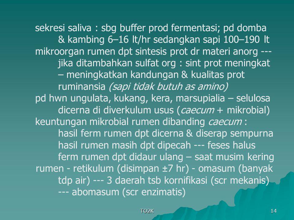 TO2K 14 sekresi saliva : sbg buffer prod fermentasi; pd domba & kambing 6–16 lt/hr sedangkan sapi 100–190 lt mikroorgan rumen dpt sintesis prot dr mat