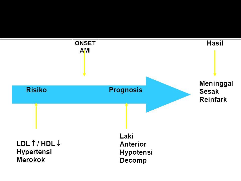 Hasil Meninggal Sesak Reinfark RisikoPrognosis ONSET AMI Laki LDL  / HDL  Hypertensi Merokok Faktor : Umur Sex Lab Tek. Darah Laki Anterior Hypotens