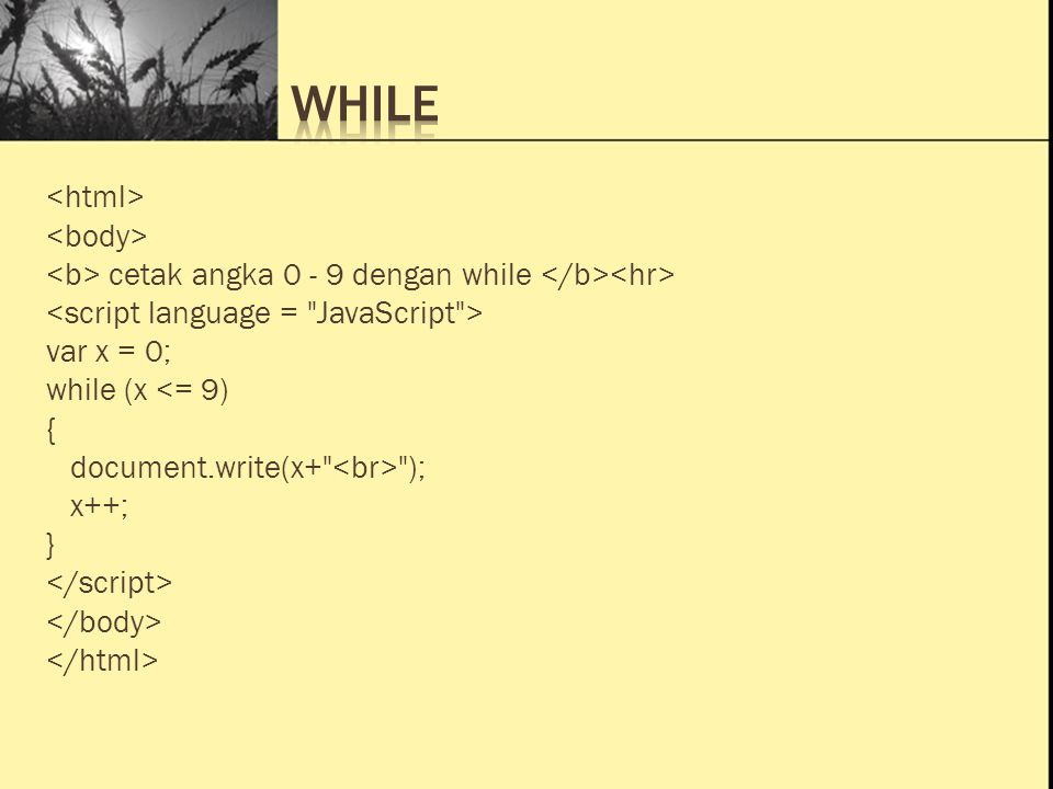 Ini Judul 1 Ini Judul 2 Ini Judul 3 cetak angka 0 - 9 dengan while var x = 0; while (x <= 9) { document.write(x+ ); x++; }