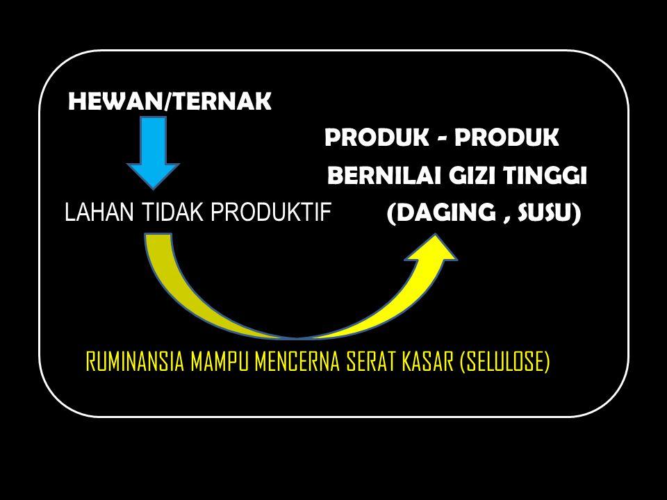 HEWAN/TERNAK PRODUK - PRODUK BERNILAI GIZI TINGGI LAHAN TIDAK PRODUKTIF (DAGING, SUSU) RUMINANSIA MAMPU MENCERNA SERAT KASAR (SELULOSE)