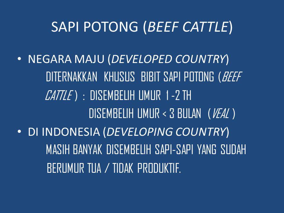 INDUSTRI PETERNAKAN SAPI POTONG (DEVELOPED COUNTRY ) DIKELOMPOKKAN: 1.