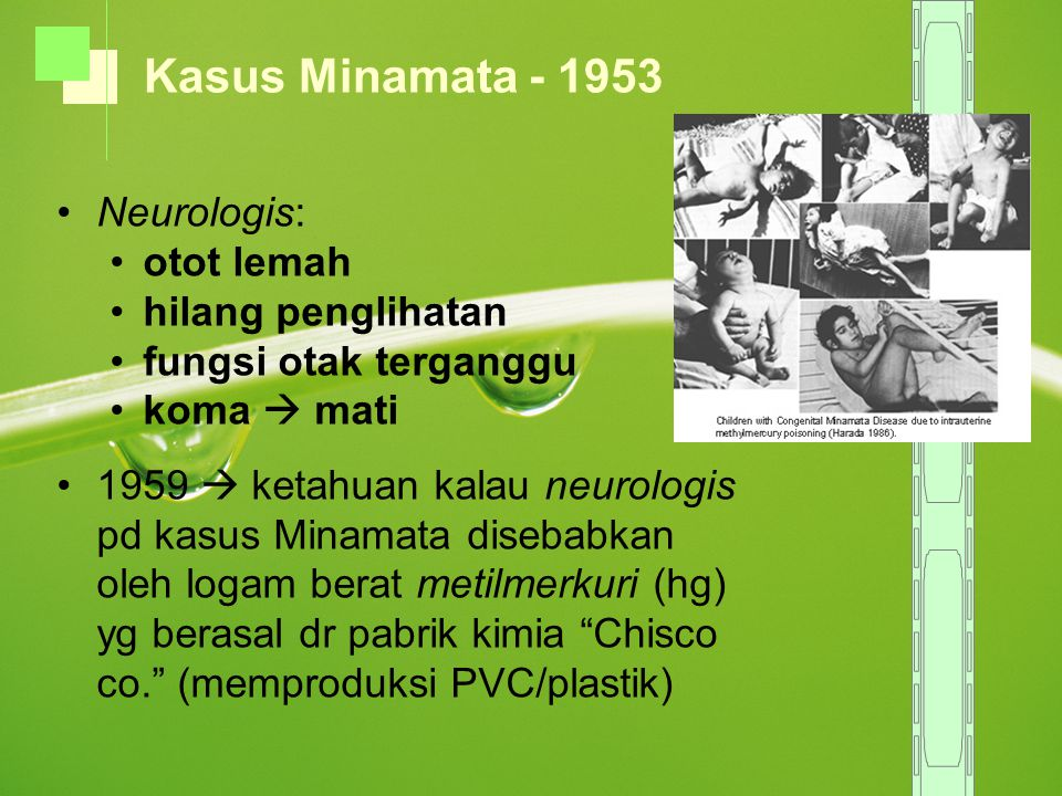Neurologis: otot lemah hilang penglihatan fungsi otak terganggu koma  mati 1959  ketahuan kalau neurologis pd kasus Minamata disebabkan oleh logam b