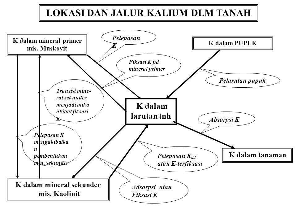 Sumber: ipipotash.org