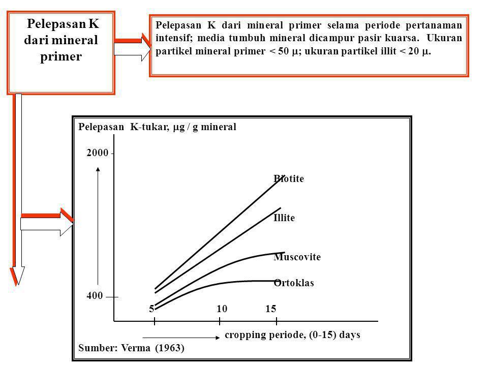 LOKASI DAN JALUR KALIUM DLM TANAH K dalam mineral primer mis.