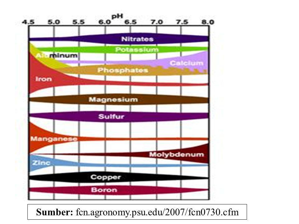 Pengaruh pH thd fiksasi K Pengaruh thd fiksasi K Pengaruh pH terhadap fiksasi K bersifat tidak langsung, yaitu melalui pengaruh pH thd jenis aktion yg dominan pada posisi inter-layer mineral liat.