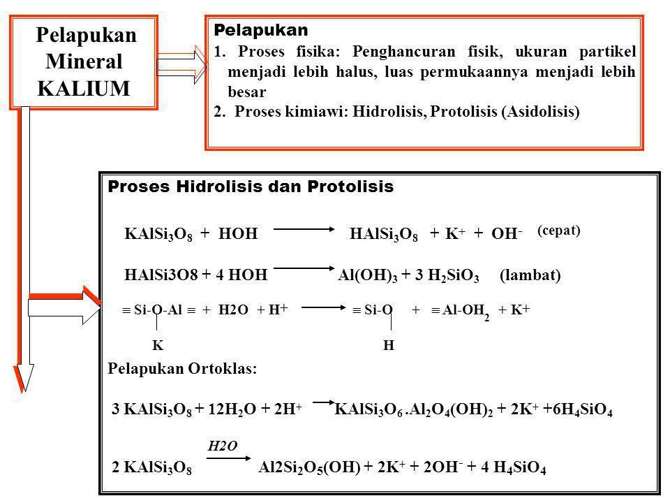 KALIUM TANAH Sumber K-tanah Mineral primer yang mengandung kalium: 1.